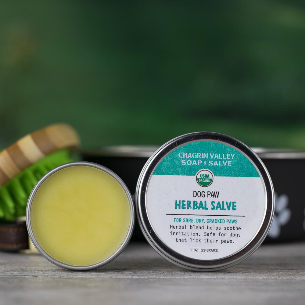 Dog Paw Herbal Salve