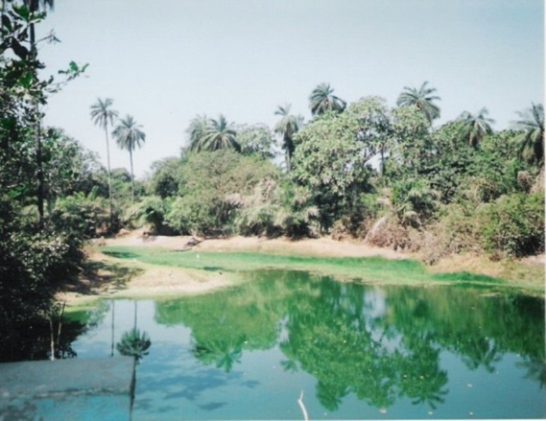 Mandina Bolong (Creek), Gambia