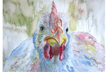 Beautiful Hen Print