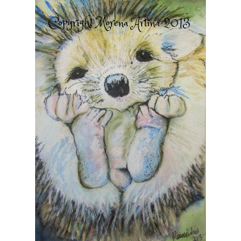Baby Hedgehog Gicl..