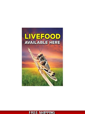 Fresh Reptile LIVEFOOD ..