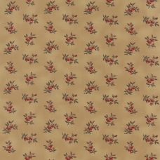Richmond Reds by Barbara Brackman - 100% cotton quilting fabric by Moda.
