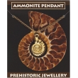Ammonite Pendant - Gold..