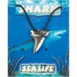 Shark Tooth Pendant - P..