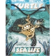 Turtle Pendant - Gold P..