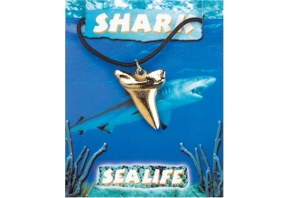 Shark Tooth Pendant - Gold Plated