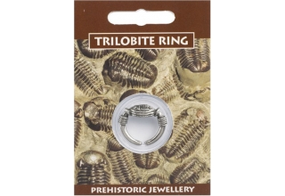 Trilobite Ring - Pewter