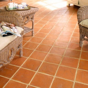 * Terracotta Cleaning and Se..