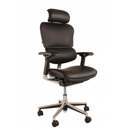 Ergohuman Plus Elite leather office chair with headrest
