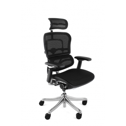 Outstanding Ergohuman Plus Luxury Mesh Office Chair With Headrest Home Interior And Landscaping Ologienasavecom