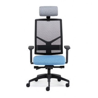 IS250 Activ i-SIT mesh high back task ..