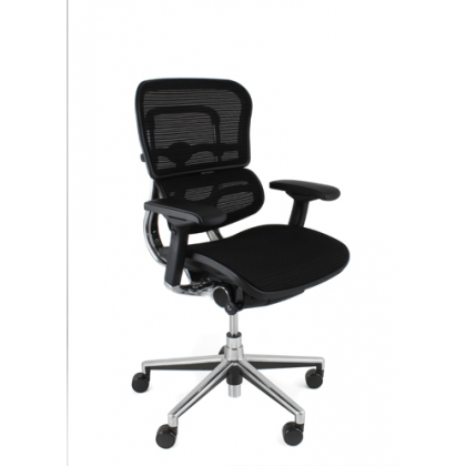 EHPE-LAM Ergohuman Plus Elite Mesh office chair without headrest