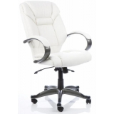 Executive leather high back office arm..