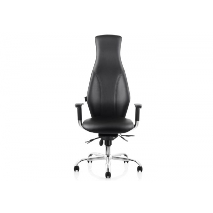 PH1 Physio high back task operator office chair