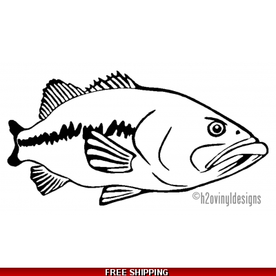 Largemouth Bass - Vinyl Sticker