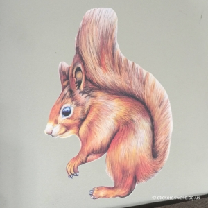 Squirrel Fabric Wall Sticker
