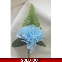 5 OFF PALE BLUE CARNATION BUTTON ..