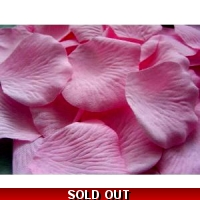 100 QUALITY CANDY PINK SILK ROSE ..