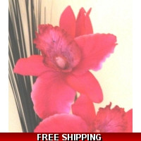 RICH PINK LARGE ORCHID FLOWER DIS..