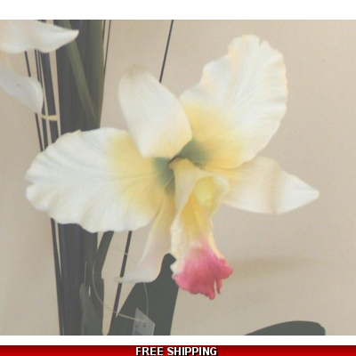 CREAM IVORY LARGE ORCHID FLOWER DISPLAY