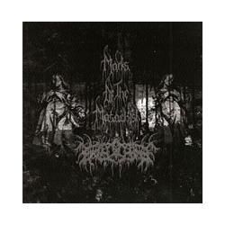 MARKS OF THE MASOCHIST/ ENECARE Split CD
