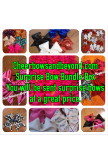Cheer Bow Bundle P..