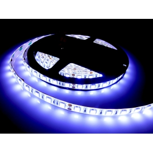 White LED Strip Light, 5050 SMD, 12-24V