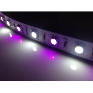 Tape* LED RGB/W 24V Flexible Tape / Strip Light - 5 Metre ..