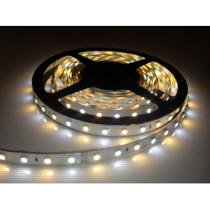 CCT Adjustable White LED Strip Light