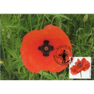 3626x4 Cross in Poppy M..