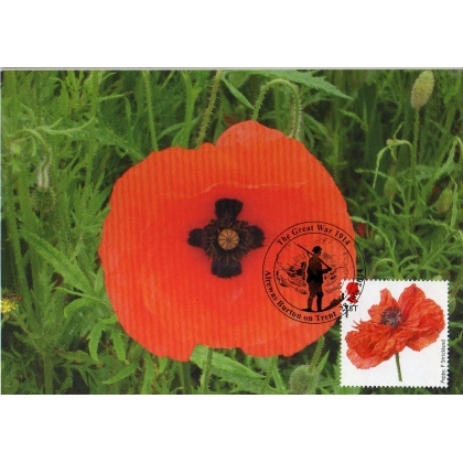 3626x4 Cross in Poppy Maximum Card 2014 Soldier postmark