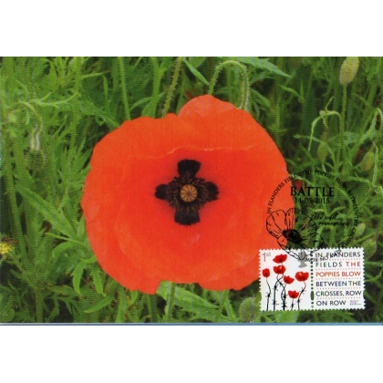 3717mx1 Poppy maximum card - in Flanders Fields.
