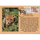 3777x4 Red Fox Maximum Card