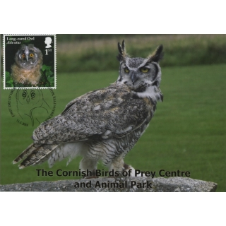 4084x Long-eared Owl maximum card 2018