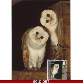 4080x0 Barn Owl maximum..