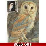 4080x4 Barn Owl maximum card 2018