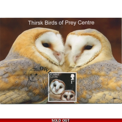 4085x9 Barn Owl juvenile maximum card 2018