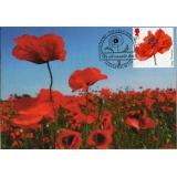 3626x2 Poppy Field Maximum Card 2014