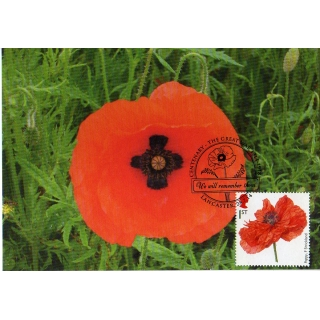 3626x1 Cross in Poppy M..
