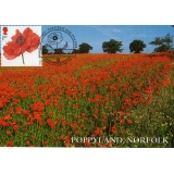 3626x3 Poppyland Norfolk  Maximum Card..