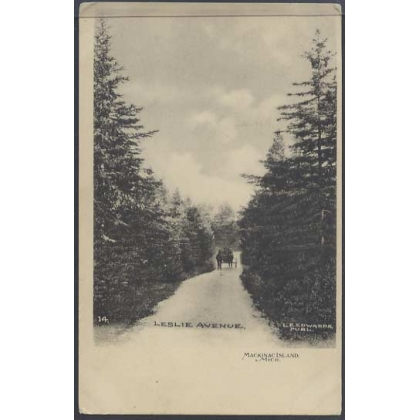 Mackinac Island, Mich. undivided back card