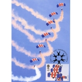 2856 RAF Falcons Air Display Maximum C..
