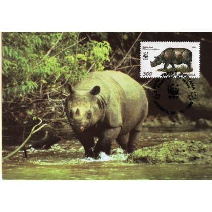 M009 Indonesia pair Javan Rhinoceros maximum card 1996