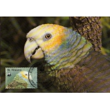 M0005 St Vincent Parrot WWF maximum ca..