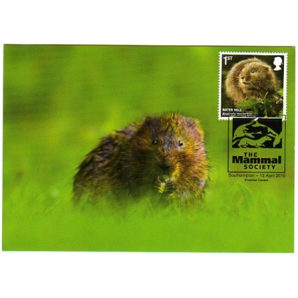 3059 Wildlife, Water Vole, maximum card