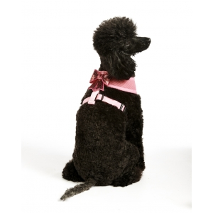 Pink Sequin Bow Harness