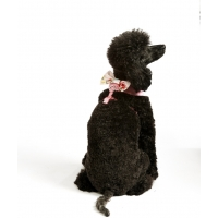 Pink Vintage Bow Harness
