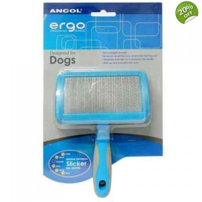 Large  Ancol Slicker Brush