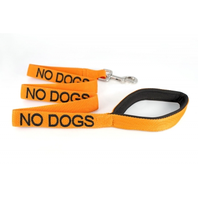No Dogs Dog Lead