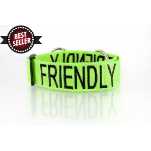 Friendly Dog Collar